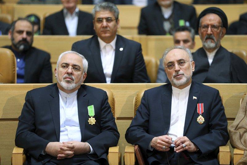 Mohammad Javad Zarif, Ali Akbar Salehi