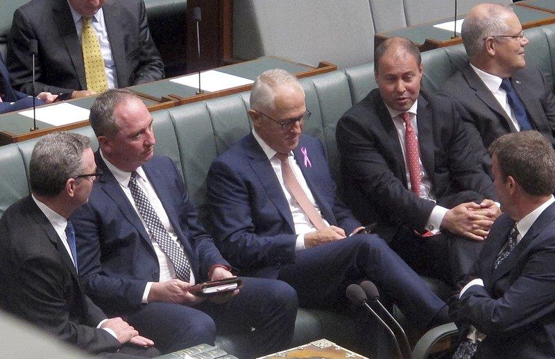 Branaby Joyce, Malcolm Turnbull