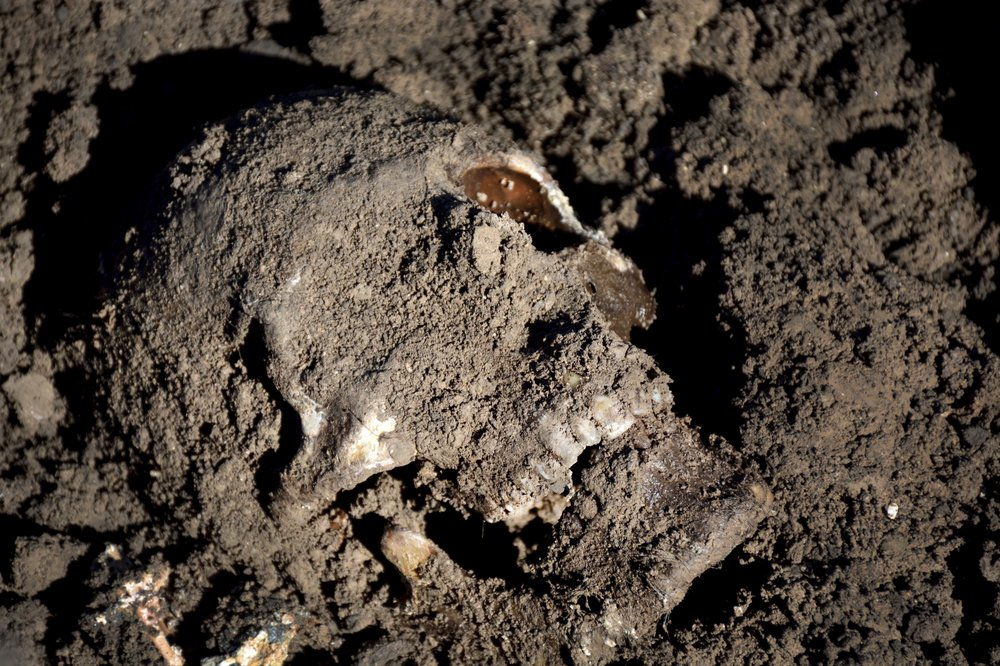 U.N. verifies 202 mass graves ISIS left behind in Iraq