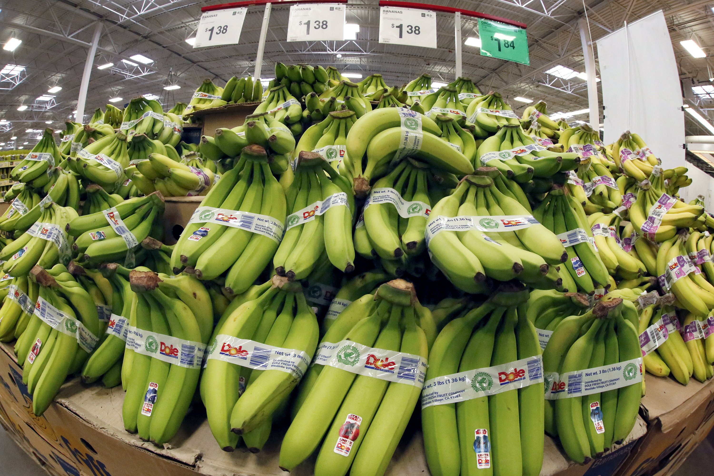 Feb wholesale prices up 0.2 pct; inflation nips producers