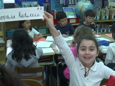 Cursive Writing Sees Revival in NYC Schools