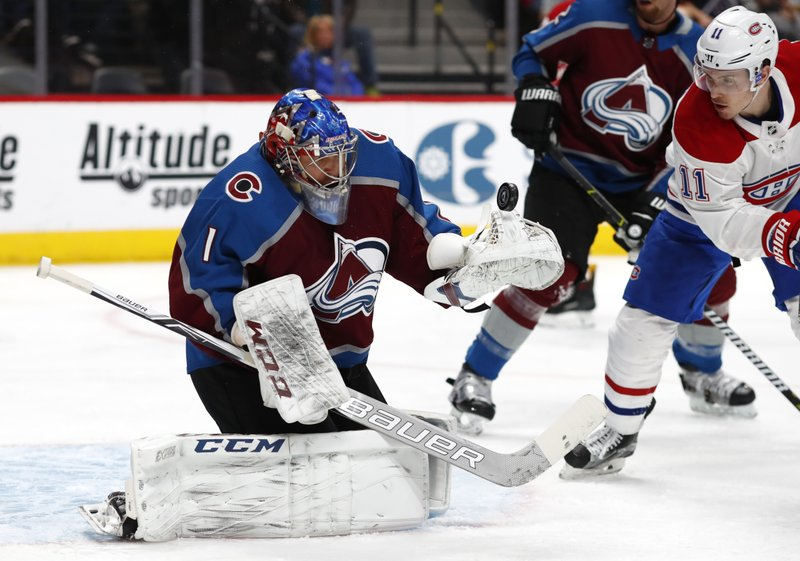 Semyon Varlamov, Brendan Gallagher