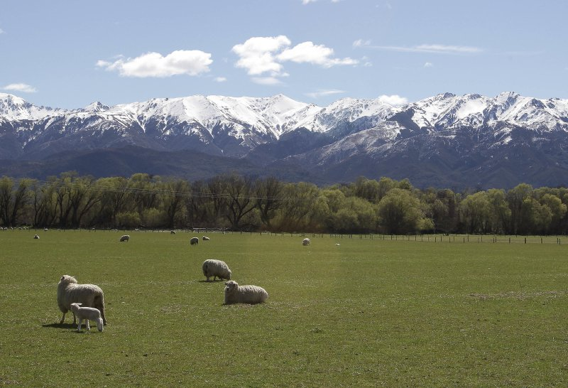 Mt Isabel, Hanmer Springs