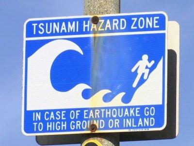 Quake Shows Complexity of Tsunami Warnings