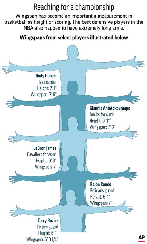 NBA WINGSPANS