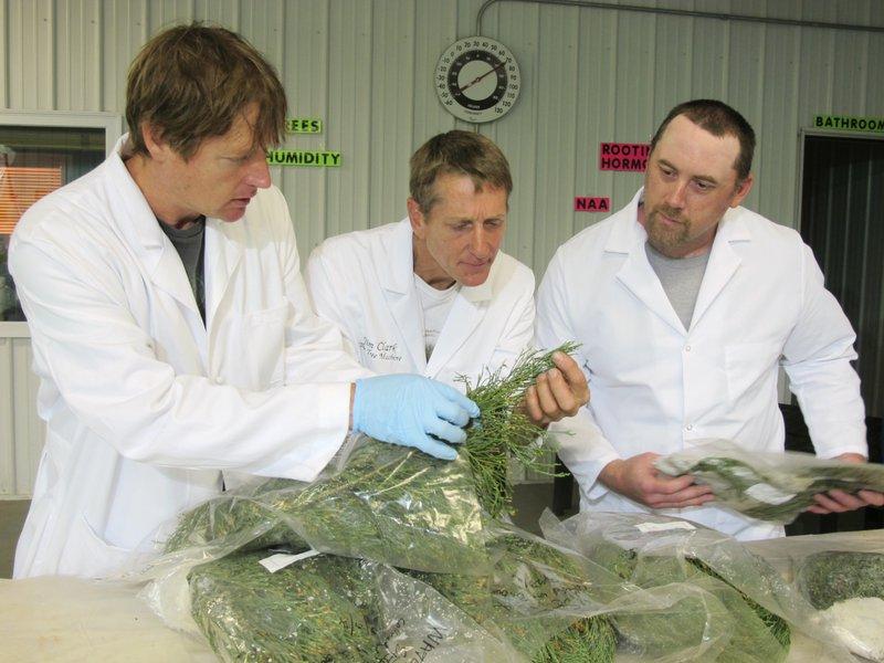 Tom Brodhagen, Jim Clark, Chris Moore