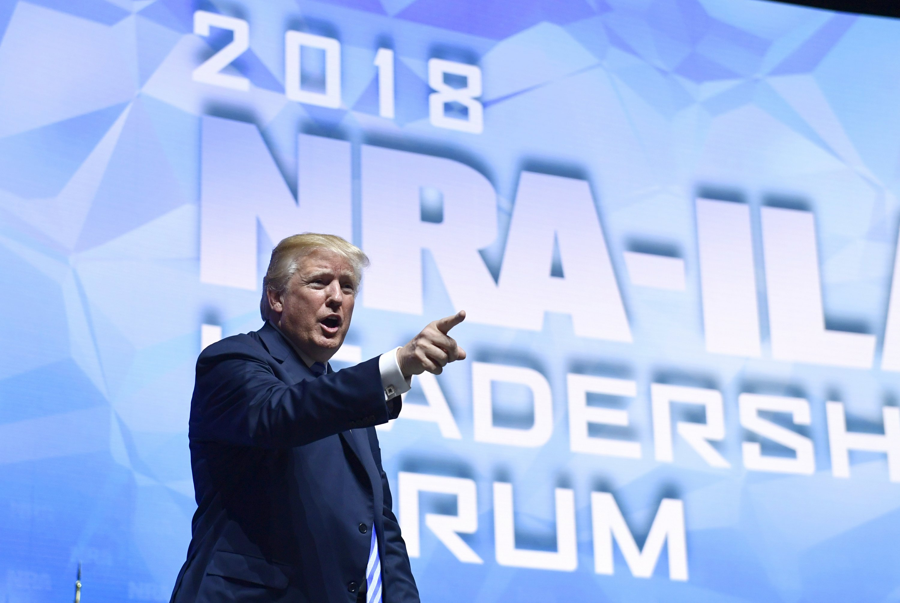 Trump salutes NRA, says elect Republicans to save gun rights