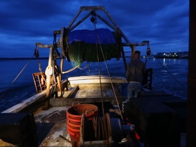 Fading Fishermen: Industry Faces a Warming World