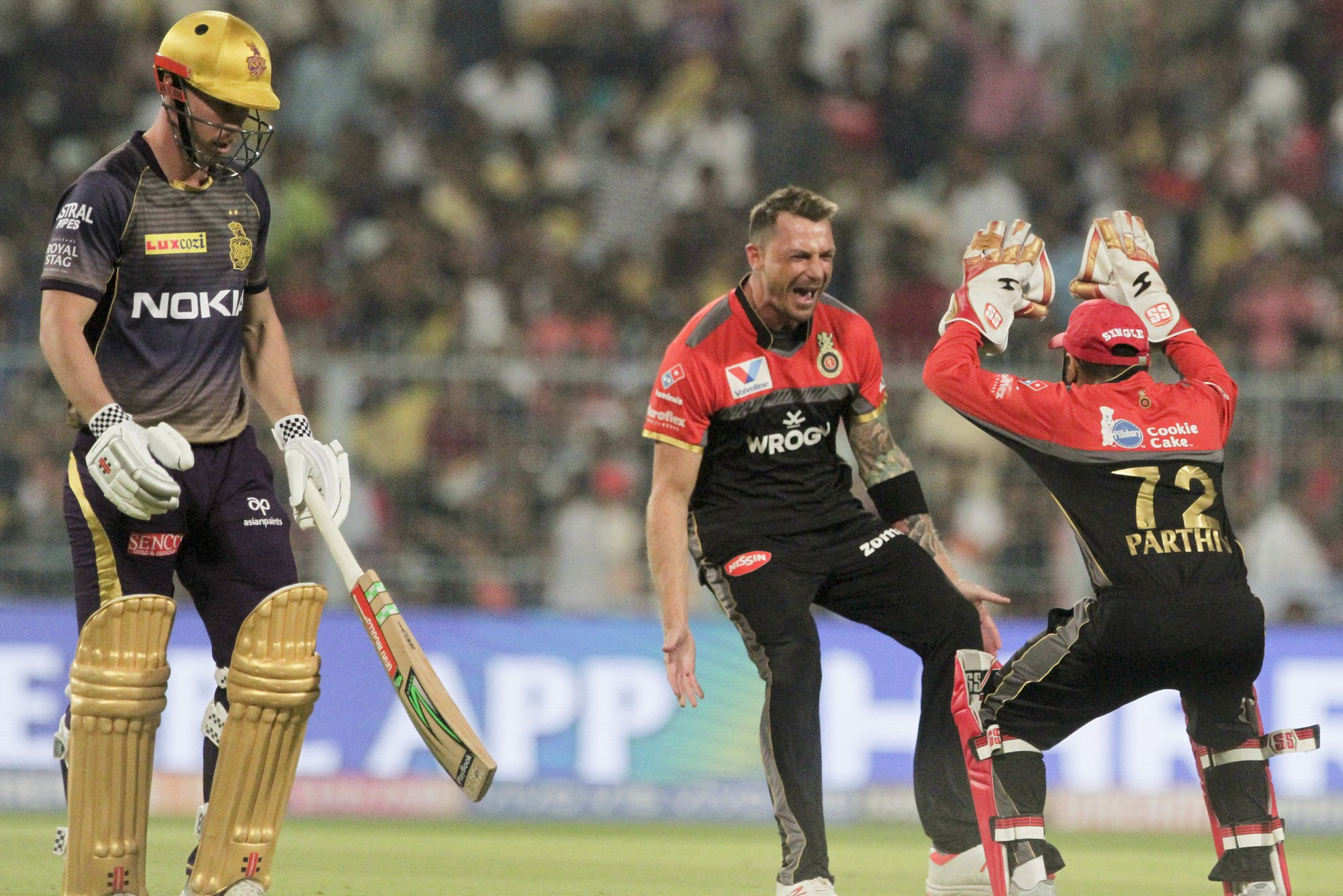 Steyn's Cricket World Cup at risk by more shoulder problems