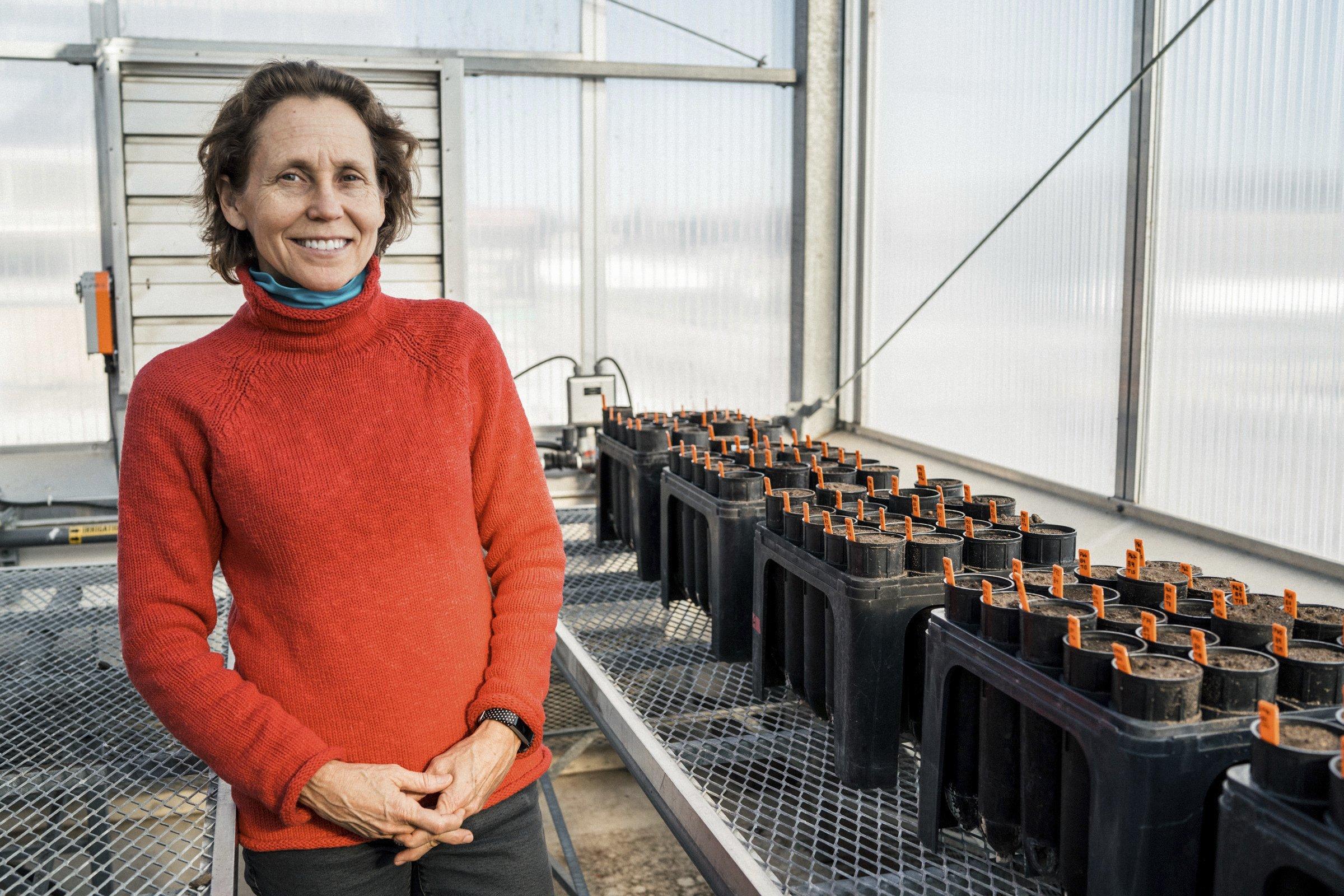 Minnesota researchers study soil