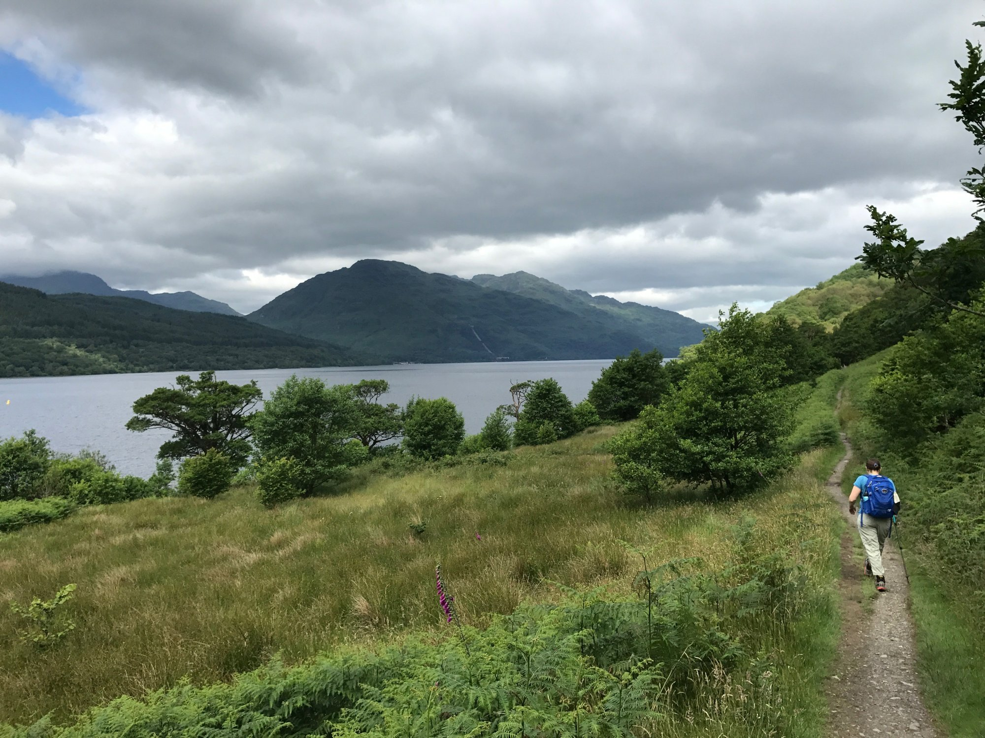Forests, moors, peat bogs: A week of walking in Scotland