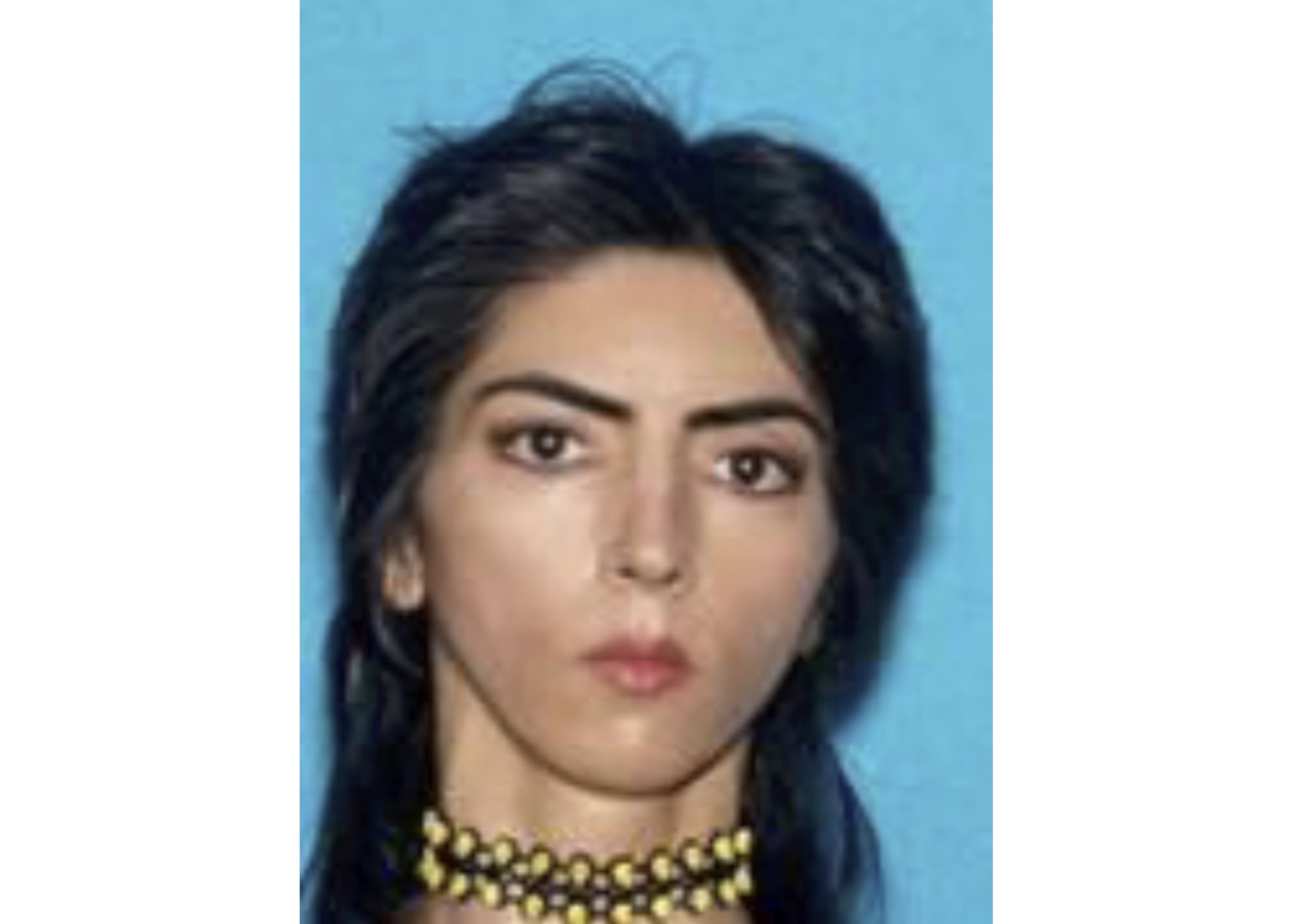 Police plan lengthy investigation of YouTube shooter's past