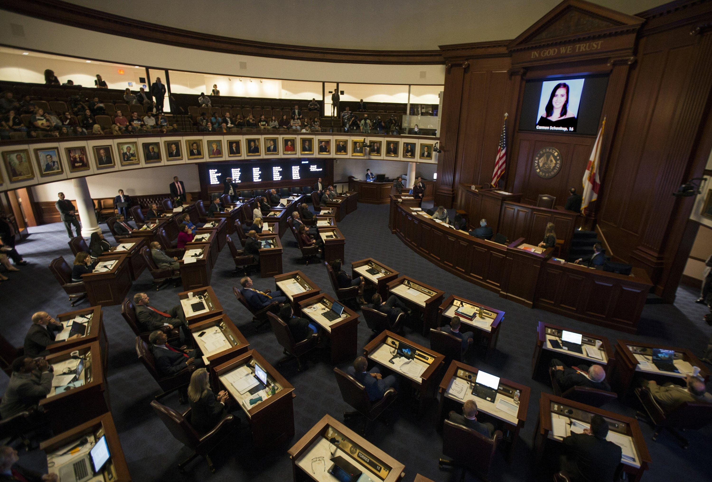 Bill restricting gun purchases goes to Florida Senate
