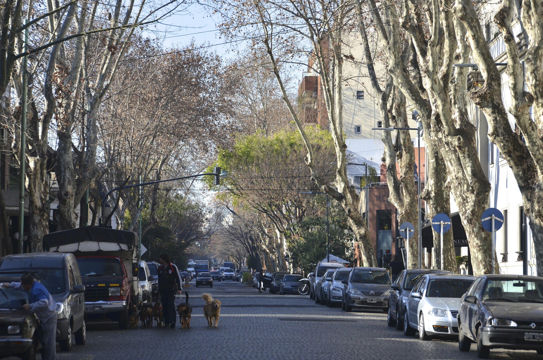 """Résultat de recherche d'images pour """"The Palermo neighborhood buenos aires"""""""