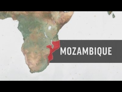 Farmers Grow Coffee to Restore Mozambique Forest