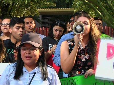 Phoenix DACA Participants Say 'Not Going Back'