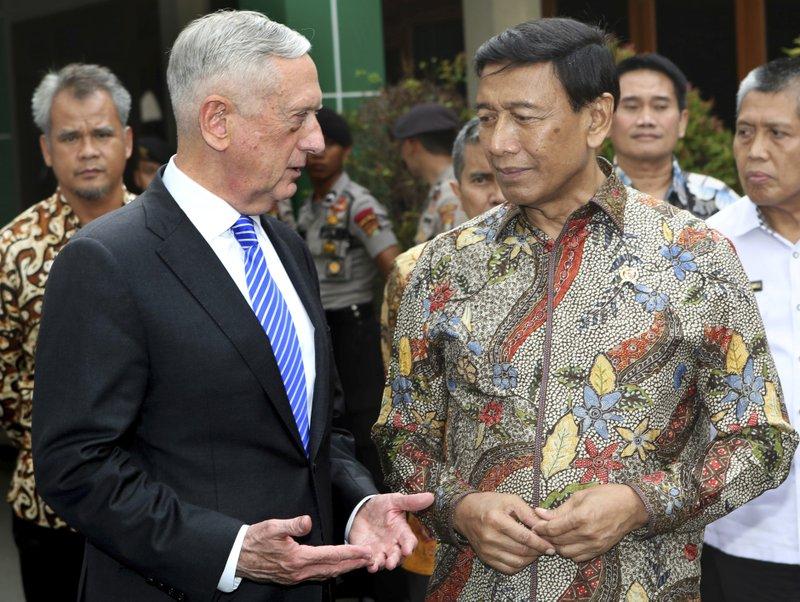 Jim Mattis, Wiranto