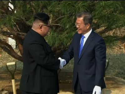 Raw: Kim, Moon Plant Tree, Continue Talks