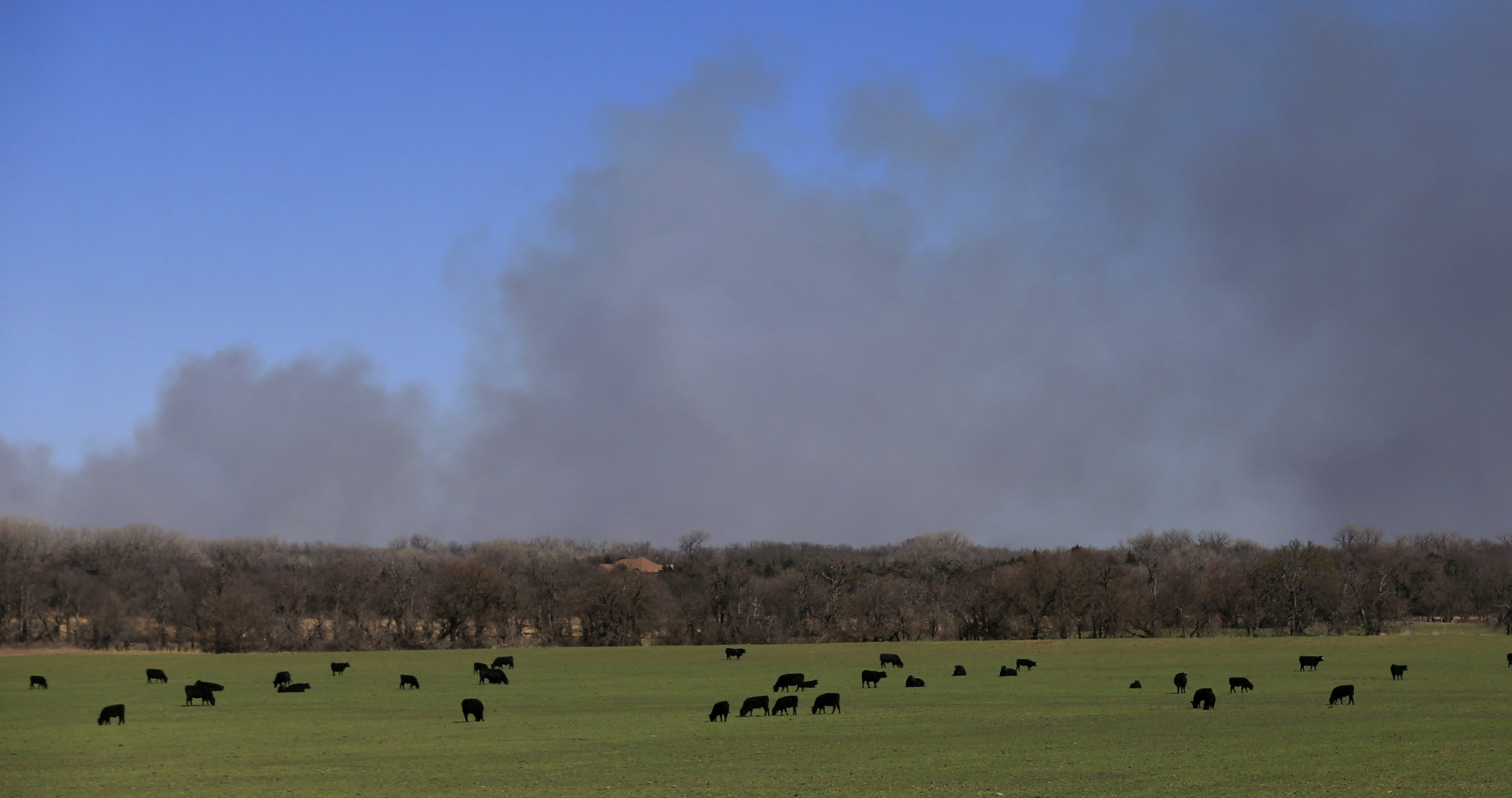 Ranchers assess damage after wildfires in 4 states