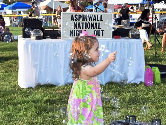 Photo Gallery: Aspinwall National Night Out