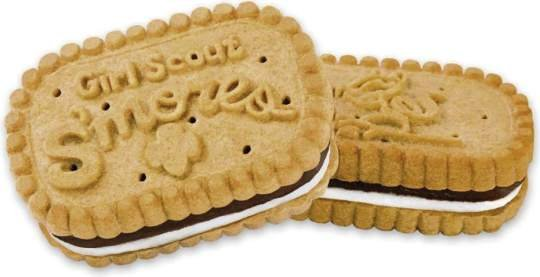 Today is National S'mores Day; Girl Scouts celebrate in Western Pa.