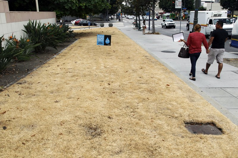 Los Angeles City Hall, drought, lawn watering