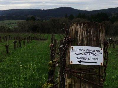 Farmers Fear Worker Shortage Amid Crackdown
