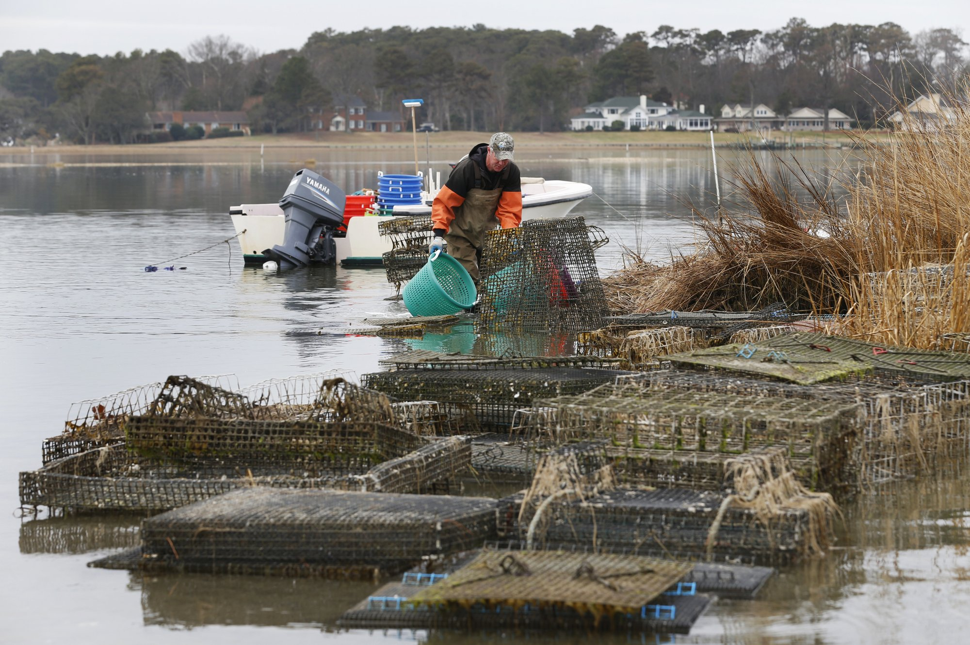 Wealthy homeowners take on oystermen in war for the coast