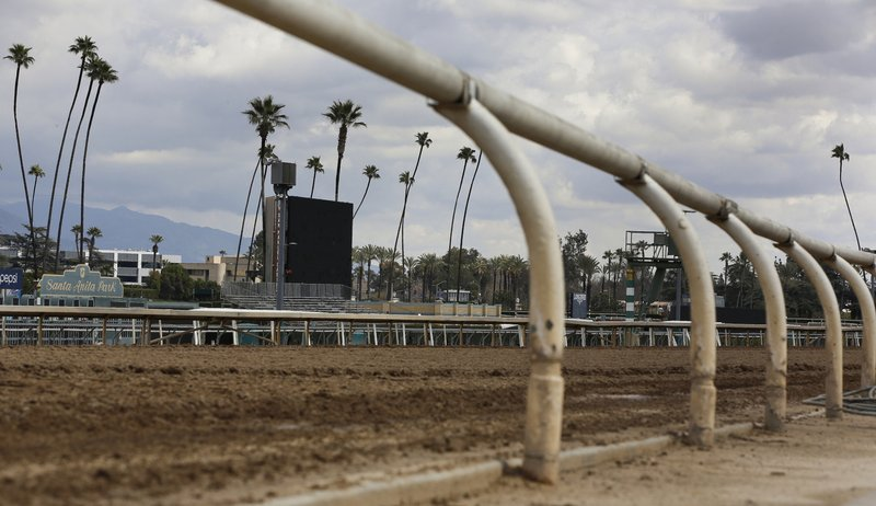 Prosecutors look into spate of horse deaths at Santa Anita