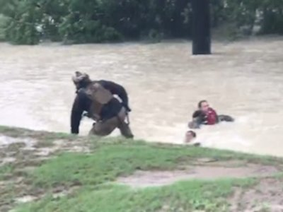 Houston's Water Rescues Show Harvey's Wrath