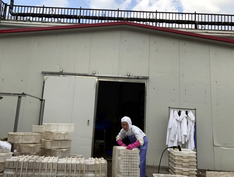 North Korean workers prepare seafood going to US stores