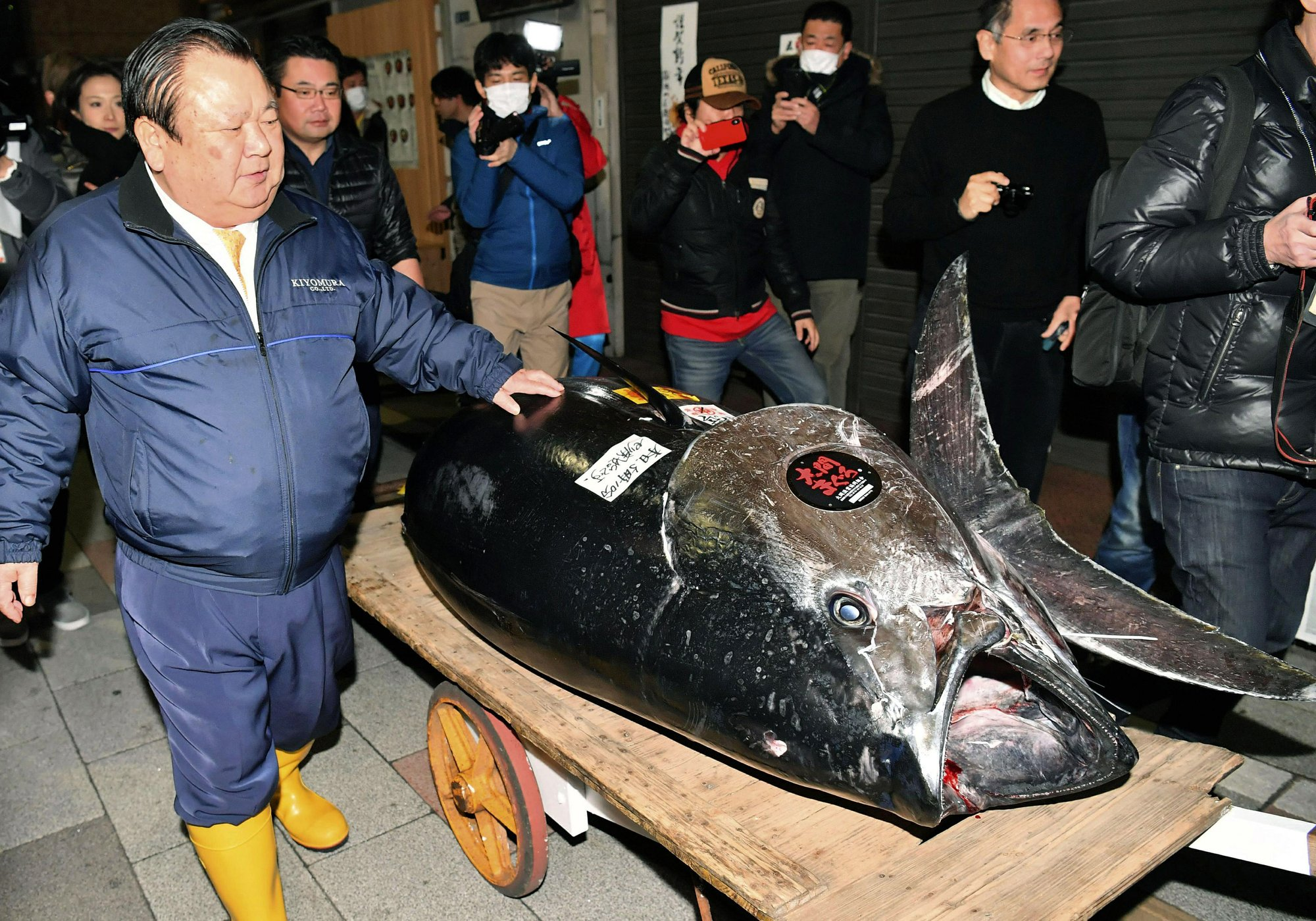 Bluefin goes for $3 million at 1st 2019 sale at Tokyo market