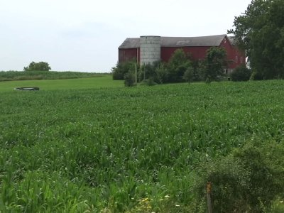 Wisc. Residents Happy About Foxconn Announcement