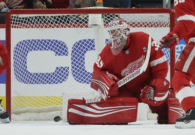 34bc0b6a76f DETROIT (AP) — The Detroit Red Wings ended a third straight season without  a postseason bid, counting on a core of players 24 years old and younger to  end ...