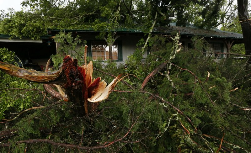 The Latest: Woman killed in Alabama after tree falls on home