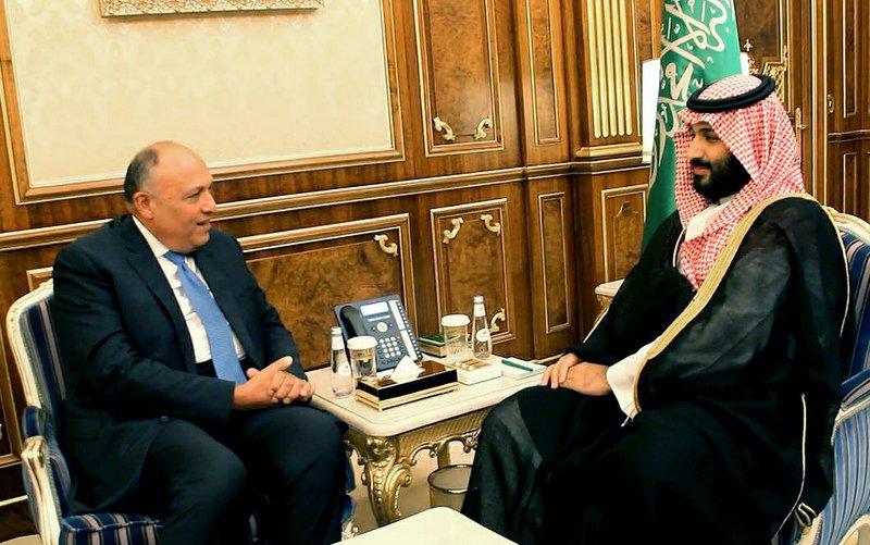 Mohammed bin Salman, Sameh Shoukry