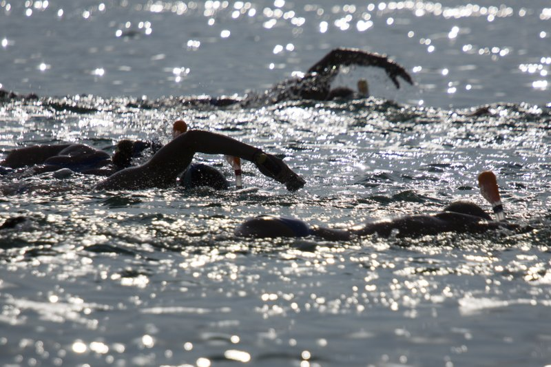 best service efab0 a9d7d Swimmers complete 7-hour crawl across shrinking Dead Sea