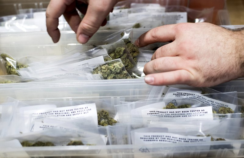 High or Dry? California legal pot to test supply pipeline
