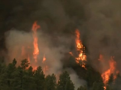 Wildfire Closes Colorado's National Forest