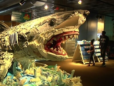 Sea-Life Sculptures Made From Ocean's Trash