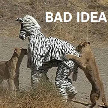 :||: BADidea :||:  :||: badIDEA :||:
