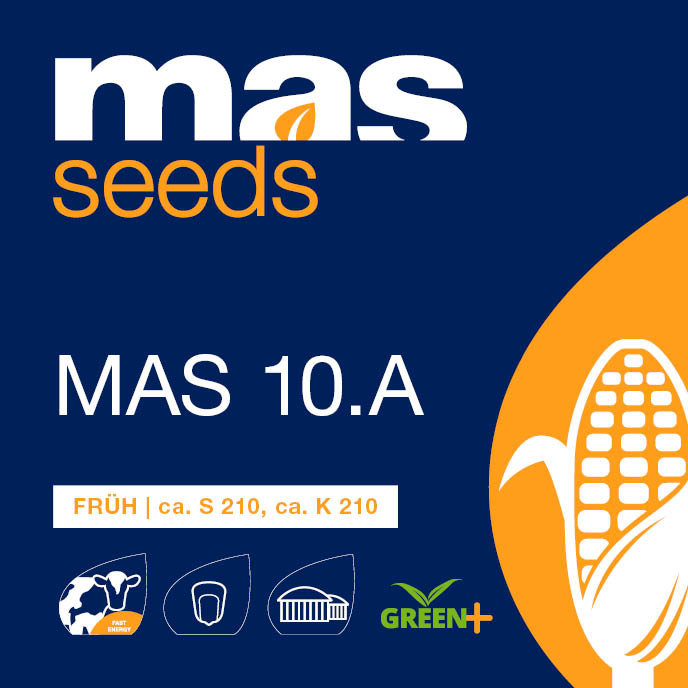 MAS 10.A undefined