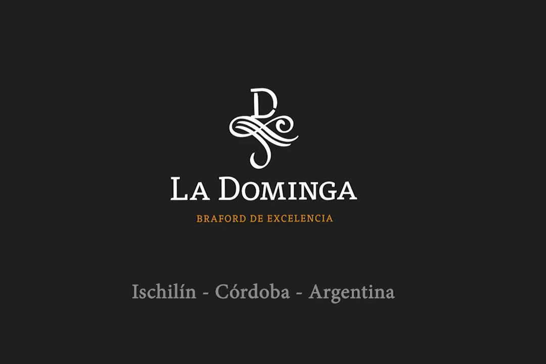 Cabaña La Dominga