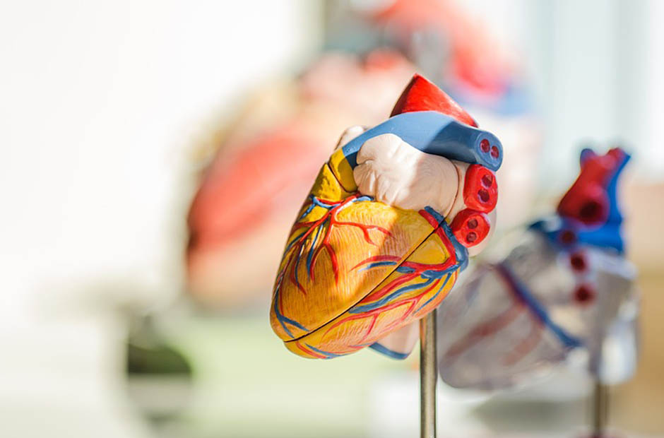 Cardiovascular Tech Program Application in 5 Simple Steps - AIMS Education