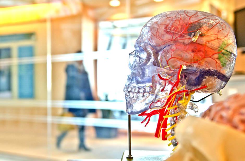 Neurodiagnostic Tech Guide - AIMS Education
