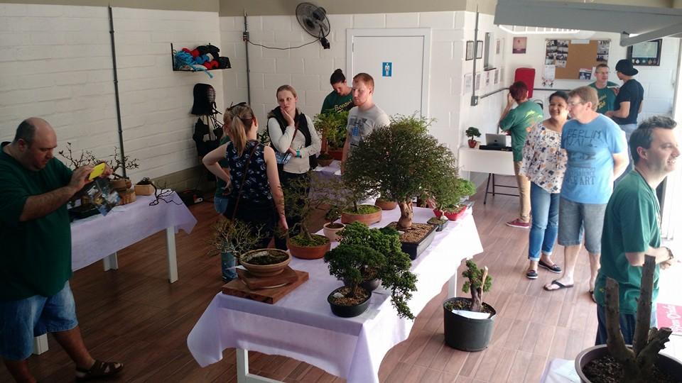 Público se encantou com as pequenas árvores na bandeja!
