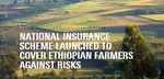 National Insurance Scheme Launched to Cover Ethiopian Farmers (2016, blog)