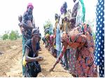 Visite d'expérience dans le périmètre maraicher de l'association « Sinignèsigui wailirde »