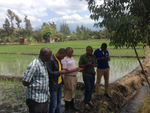 IWASP partners practice with Akvo Flow and RSR on a farm in the Usa river basin