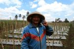 Grow the Farmer, Feed the Planet: Meet Suwarna Jaman (2018, user story)